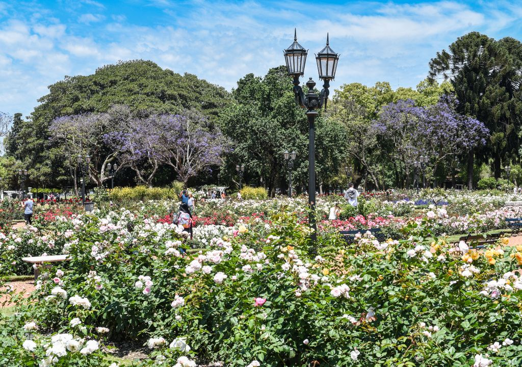 Rosedal Planetario Buenos Aires primavera