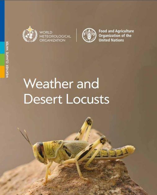 Tiempo y langosta del desierto
