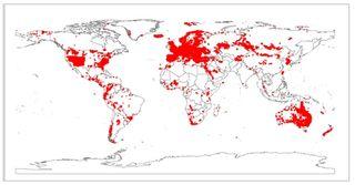 Elaboran la primera base de datos mundial de vegetación de la Tierra