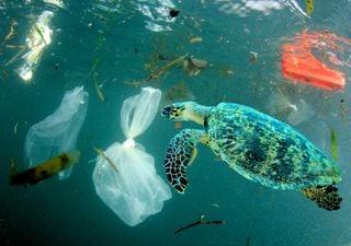 Emissões de plásticos: estamos a passar o ponto de não retorno