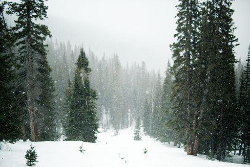 ¿Estamos a tiempo de que caiga una buena nevada?