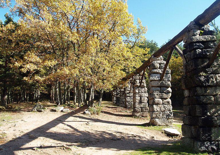 Bosque de Valsaín y El Puente de los Canales, Segovia, España.