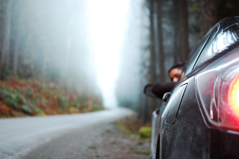 Niebla carretera