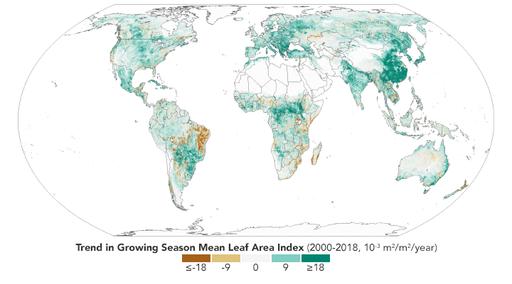 Enverdecimiento del planeta y la reducción del calentamiento global