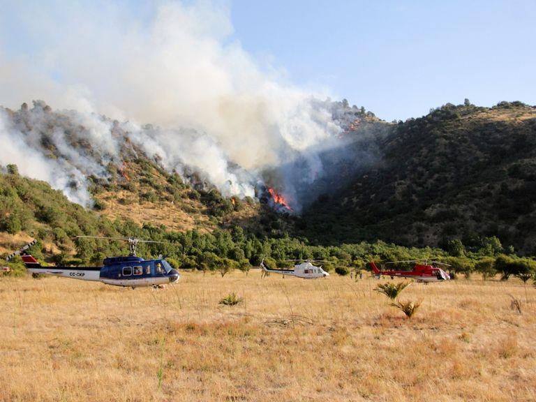 Waldbrände in Europa