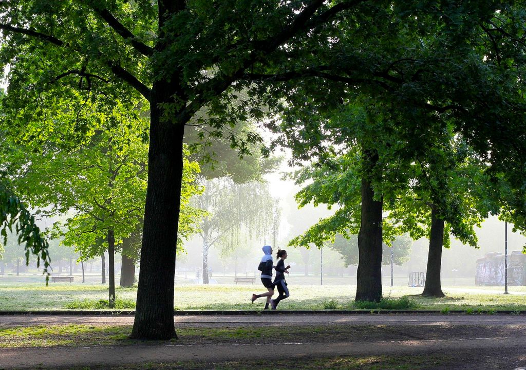 Physical exercise with polluted air can worsen your health