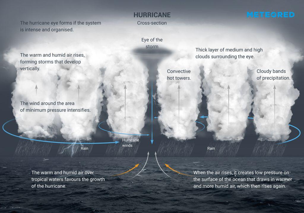 Hurricane cross section.