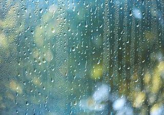 Fällt der Mai ins Wasser? Die aktuelle Wettervorhersage