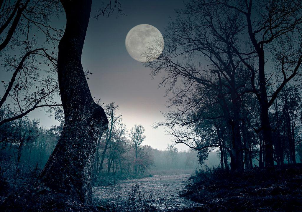 Luna negra de febrero