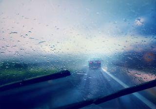 Protagonistas de la temporada de lluvias en la Península de Yucatán