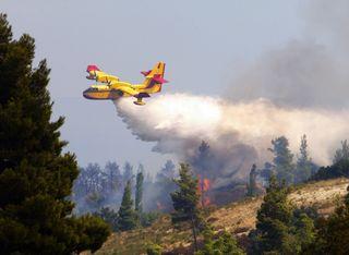 Feux de forêts en Méditerranée : le risque perdure