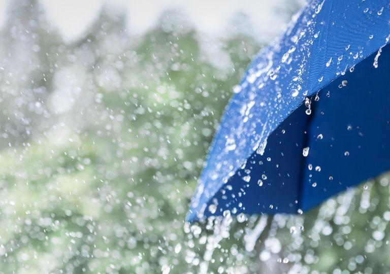 ZCAS, chuvas no sertão, frio em novembro
