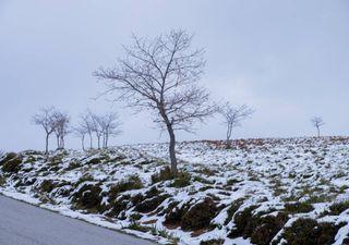 Fim de semana de neve e temperaturas baixas: até quando durará o frio?