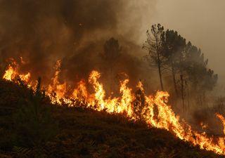 Fin de semana de viento intenso e incendios en Chile central