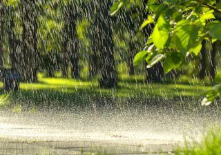 Frente fria volta a provocar chuvas em parte da Região Sul