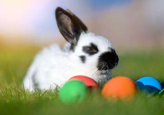 Frühlingswetter bis Ostern!