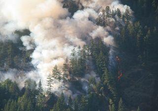 Fumaça de incêndios na Sibéria se movem pelo Hemisfério Norte