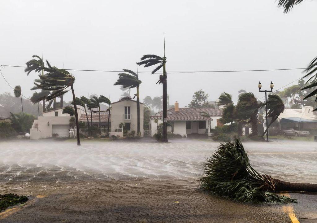 furacão; impactos