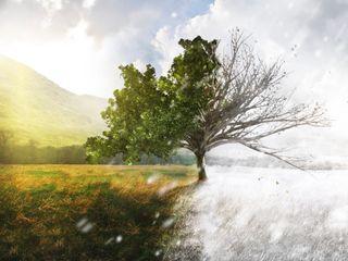 Gennaio mite e siccitoso: analisi dei dati e record di temperatura