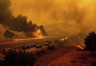Gigantesques incendies en Californie : près de 1000 maisons détruites