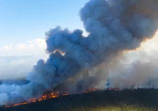 Gli incendi bruciano la taiga siberiana: il fumo si spinge sull'Artico