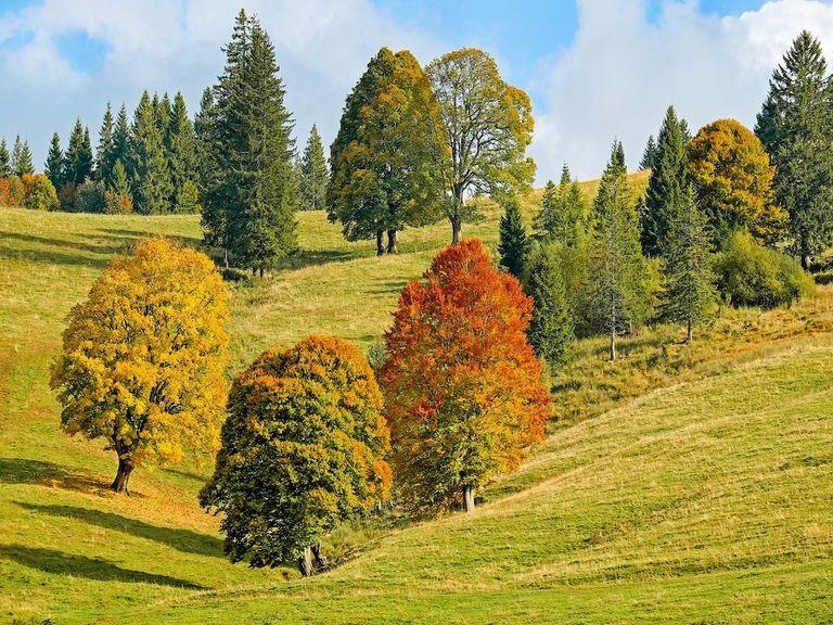 Heißer und trockener Oktober