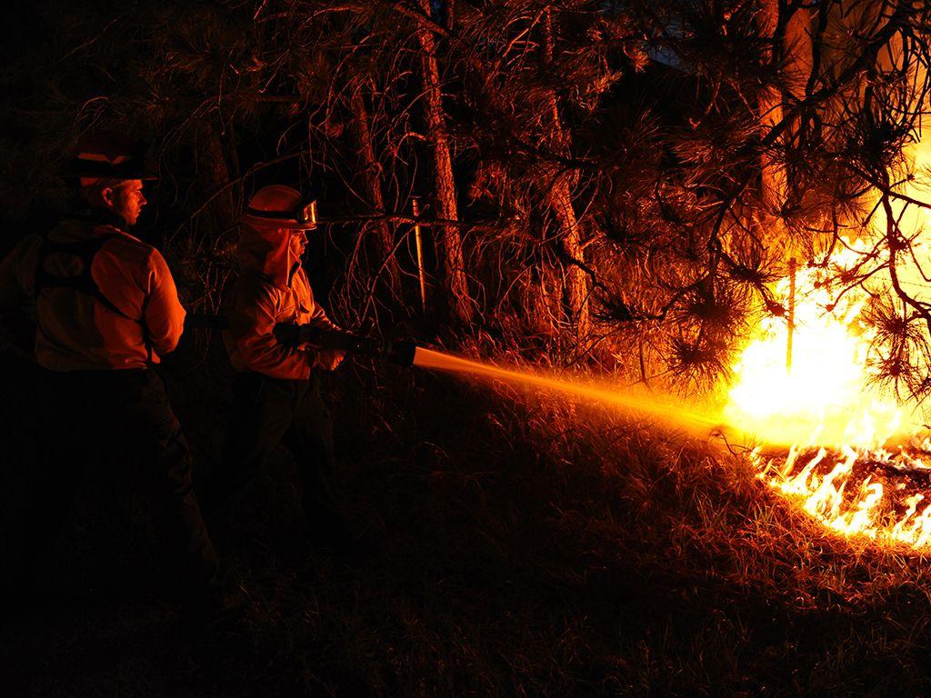 Incendios forestales España Invierno