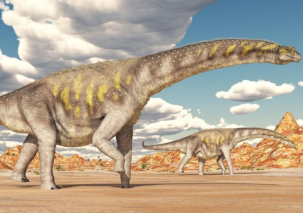 Hallan en Argentina al dinosaurio más grande del mundo