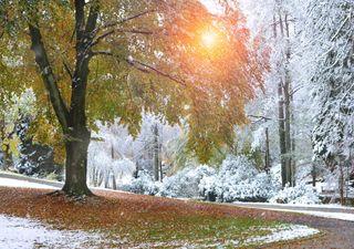Heftige Prognose: Kälteeinbruch am ersten Oktoberwochenende?