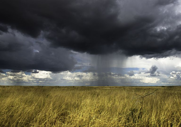 Nube con precipitación