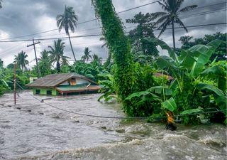 ¿Hay relación entre el cambio climático y los ciclones Grace y Nora?