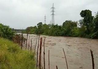 Huracán Eta: desborde de ríos y caída de palmeras en Centroamérica