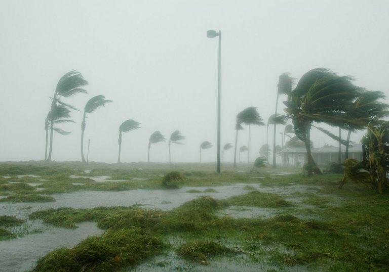 Hurrikan trifft Madeira