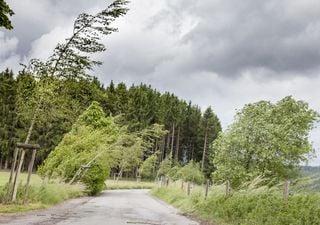 """I """"downburst"""": le violente raffiche di vento prodotte dai temporali"""
