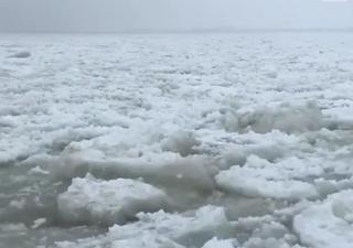 Il vortice polare piomba in nord America portando gelo e neve: i video