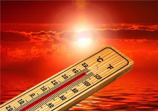 Impactantes datos del recuento de olas de calor en Chile