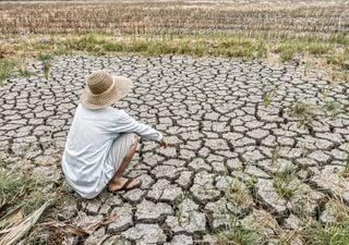 Impactantes evidencias de la crisis climática global