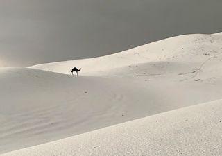 Major hailstorm makes Arabian desert white