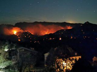Incendie en Corse : 1100 ha de végétation détruits
