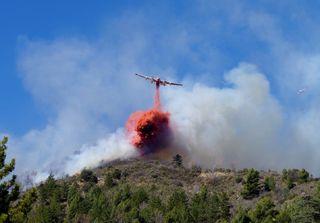 Incendies, sécheresse : l'été de tous les dangers ?