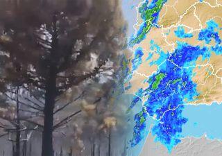 Endlich Regen! Die Waldbrände kommen langsam unter Kontrolle