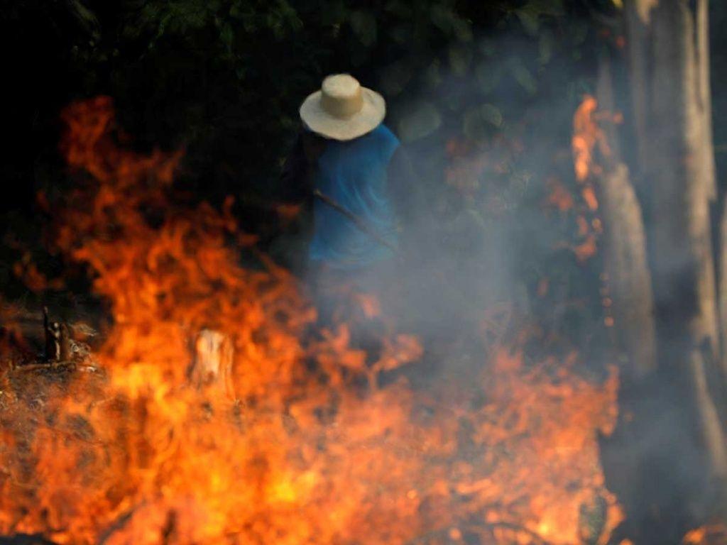 Un programa comunitario en la zona del Amazonas puede prevenir en los años futuros este tipo de situaciones. Fotografía: Excélsior