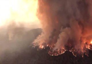 Incêndios na Austrália: número de mortos e estragos não pára de subir