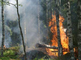 Incêndios causam transtornos próximo ao Ártico