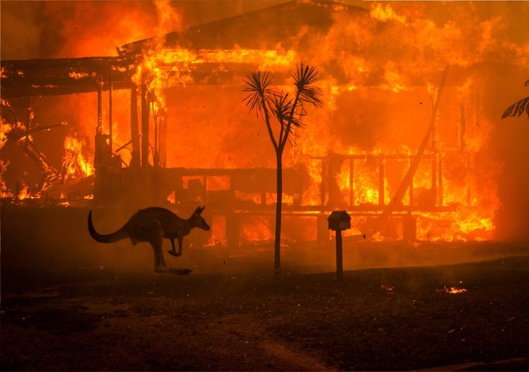 Australian fires.