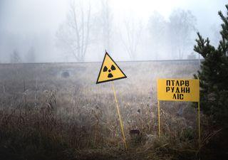Chernobyl: incêndios florestais perto da antiga central nuclear