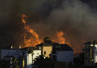 Incendios forestales: definición, prevención y medidas a tomar