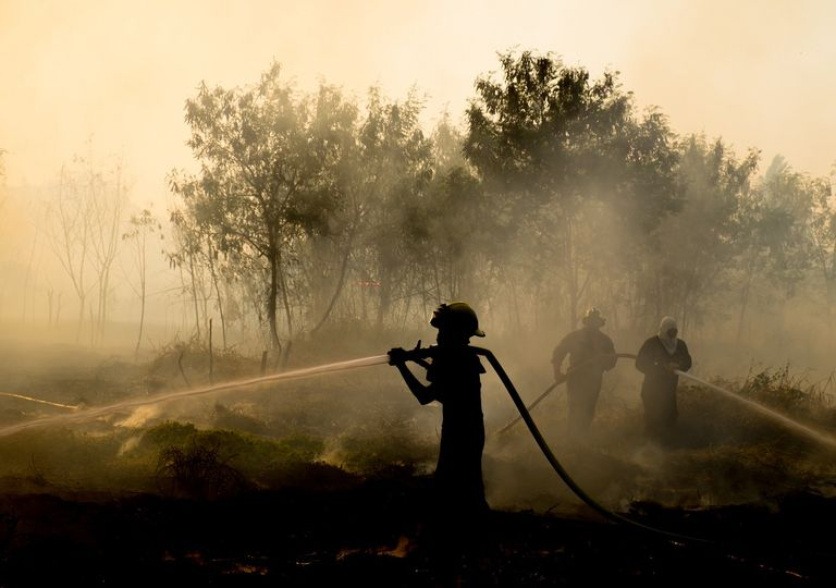 trabajos para contener incendio forestal