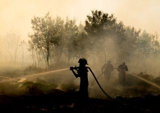 """""""Airpocalypse"""" en Nueva York y Yakutia: ¿qué está ocurriendo?"""