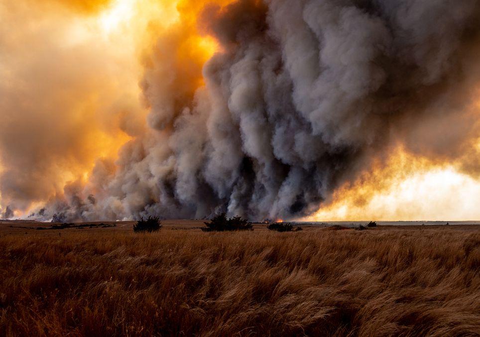 Incêndios florestais, pirocúmulos